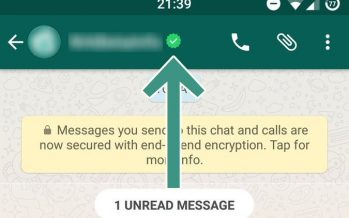 WhatsApp a commencé à vérifier les profils de société (entreprise) Voici comment le faire?